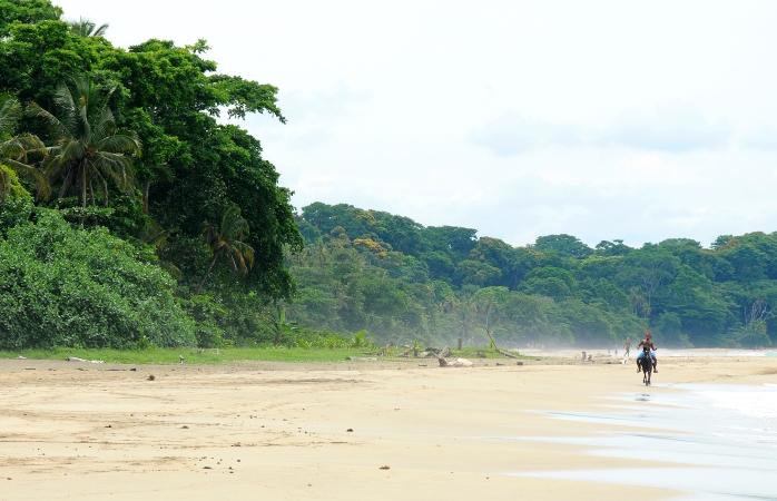 Um cavaleiro troteia ao longo da vazia Praia Cocles.