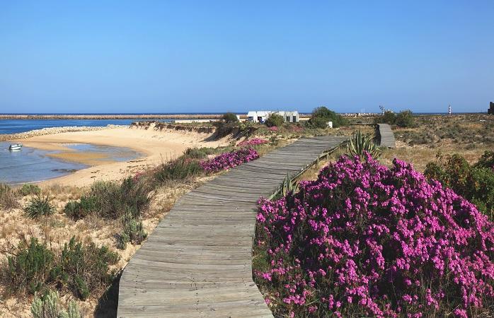 O caminho para um dia de praia perfeito. Ilha da Barreta, Algarve, Portugal