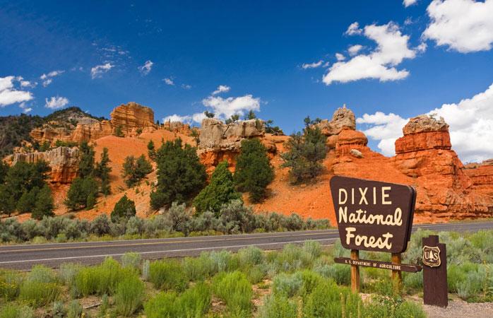 Para formações rochosas inacreditáveis, vai até à Floresta Nacional de Dixie