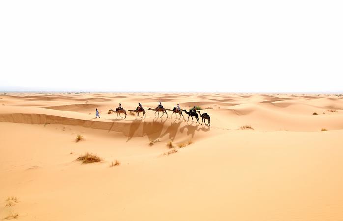 A nossa caravana de camelos no deserto.