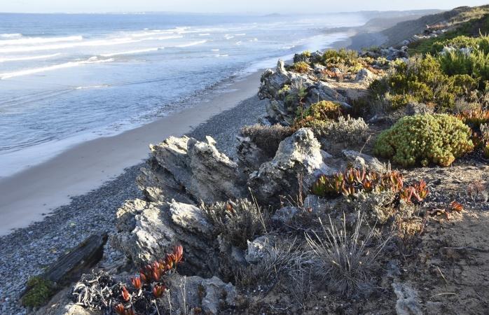 A praia dos Aivados pode ser rochosa, mas certamente vai amolecer o teu coração.