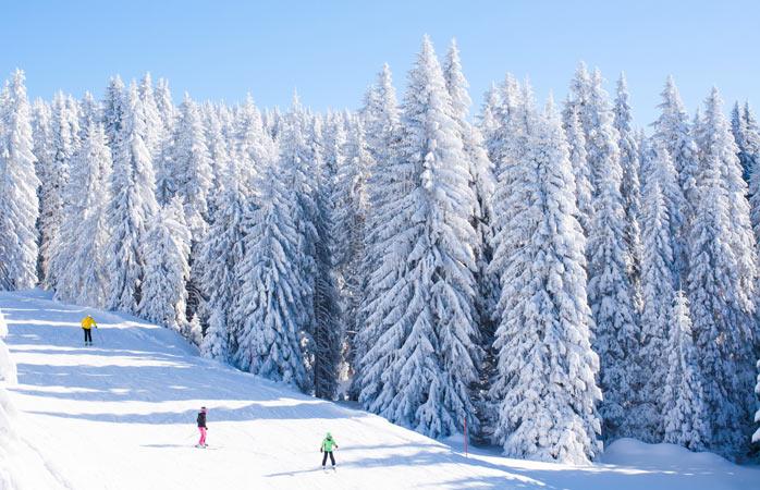 Ski low-cost em Kopaonik, Sérvia - Esquiadores em Kopaonik rodeados de pitorescas árvores cobertas de neve