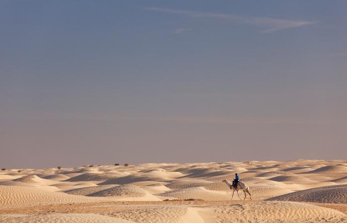 As dunas e os camelos do Deserto do Sahara, em Douz.